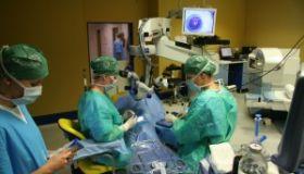 1000. letošní operace šedého zákalu