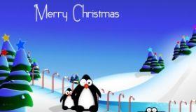 Vianočná prevádzka kliniky