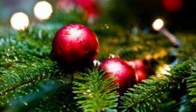 Vianočná prevádzka NeoVízie